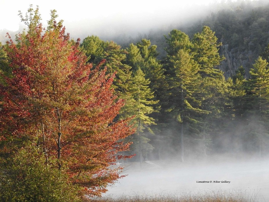 Morning fog in Bon Echo. It was a cold morning!