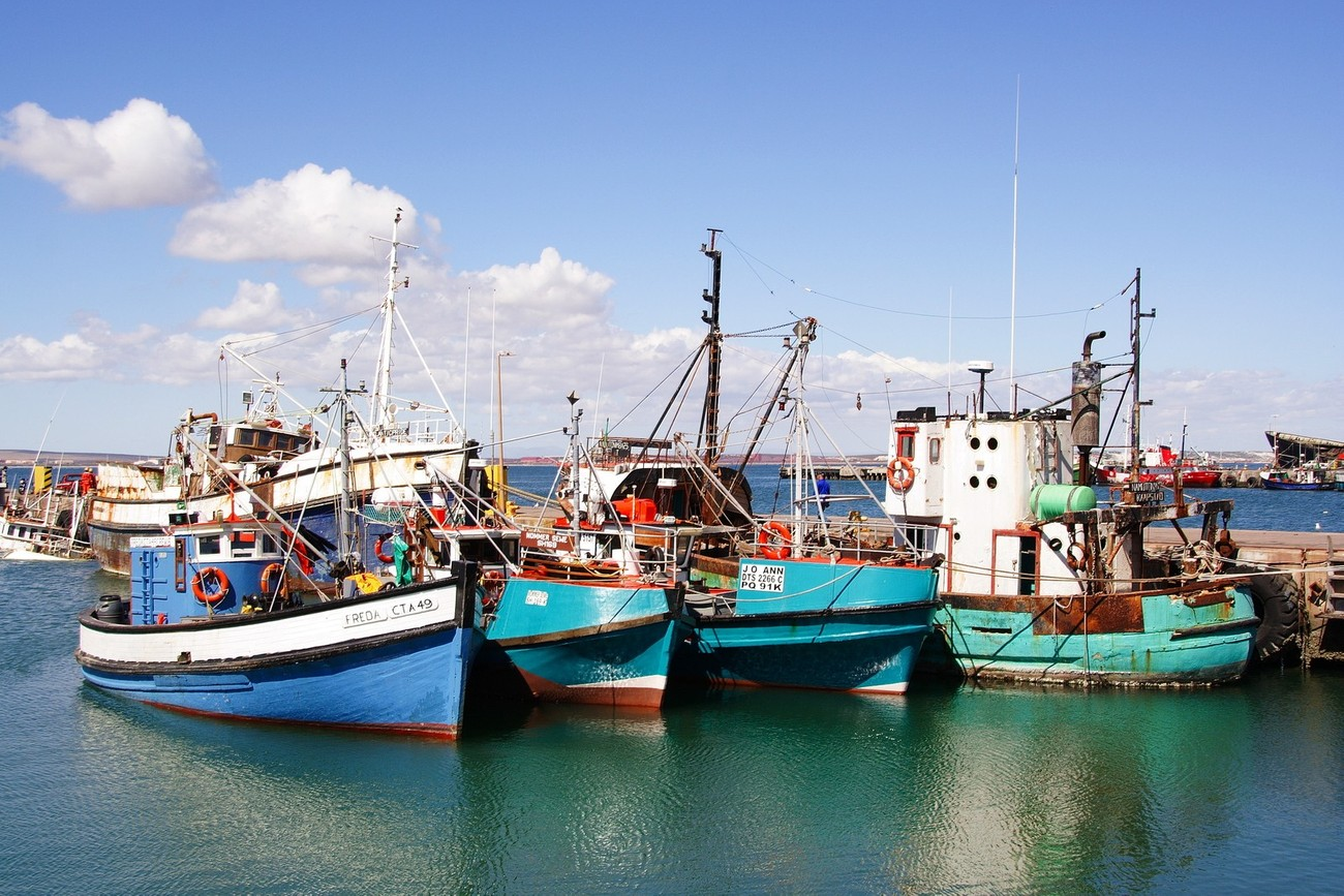 Fishing harbour at Saldanha Bay
