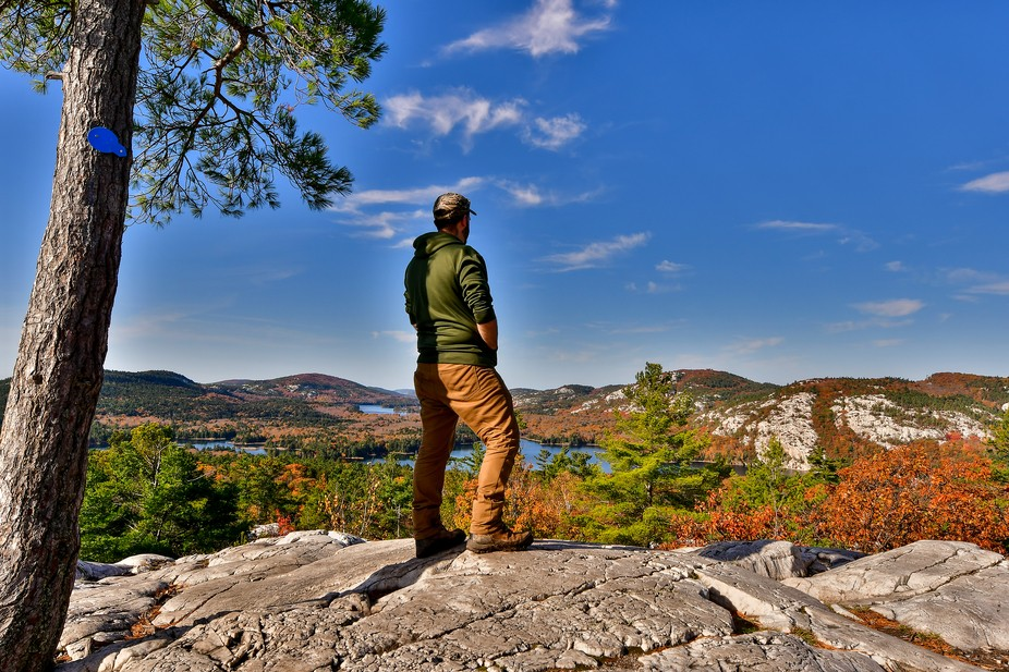 I had stumbled upon a couple websites- one was tracking the fall colours in Ontario,Canada, and a...