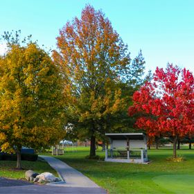 Fall at the Golf Course, Trying out My new Canon 80D with a Canon 15-85mm IS USM