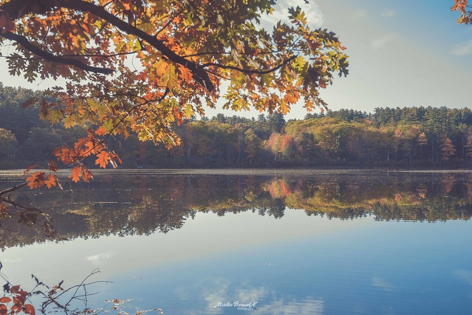Lake reflection in fall Maine, USA