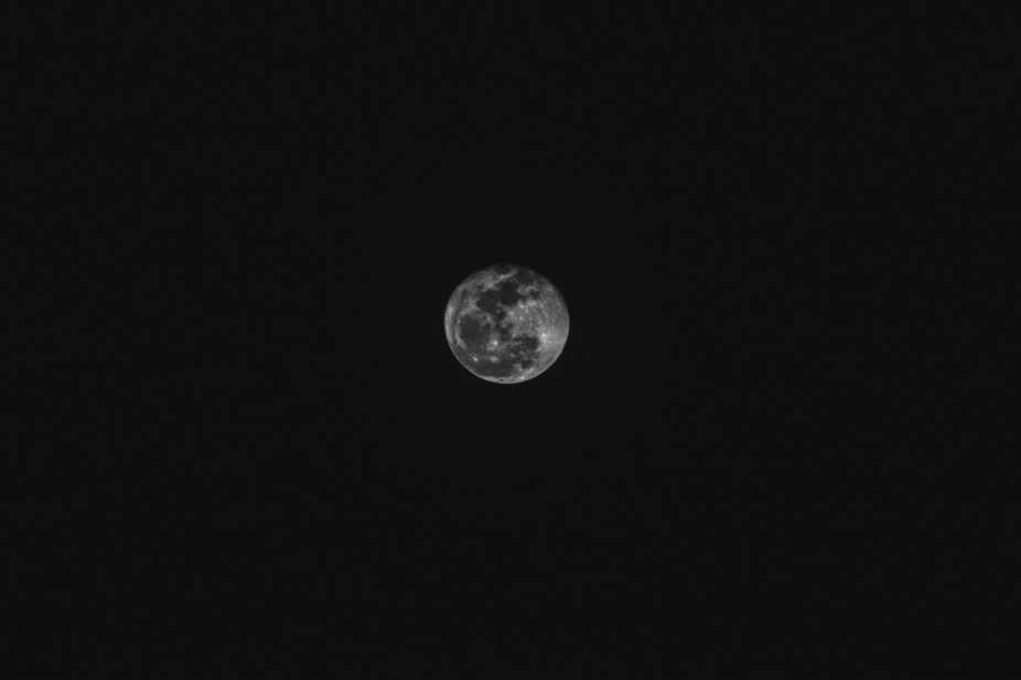 I was outside and had to take a picture of the full moon.