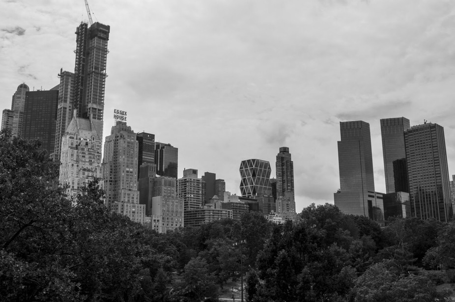 I got this from a top a rock in Central Park. It was an excellent view of the city but I chose th...