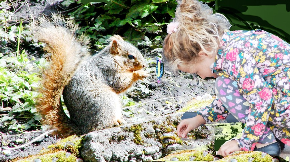 a little girl trying to make friends with a squirrel in a park