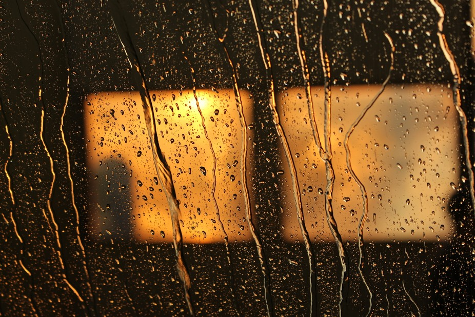 this image was captured while sitting inside the transport truck, while in a truck wash. I was drawn to the incoming light from the rising sun coming through the windows on the bay door. The water running down the windshield and lines of the bay door created a unique view.