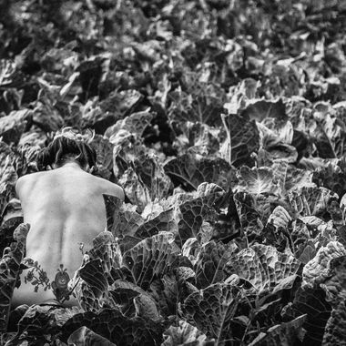 Outdoor bodyscapes - nude, anonymous, in nature