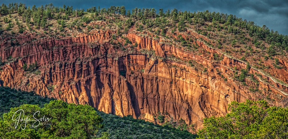 Red Mountain within the Coconino National Forrest, Flagstaff, Arizona