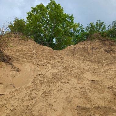 Rain Dune