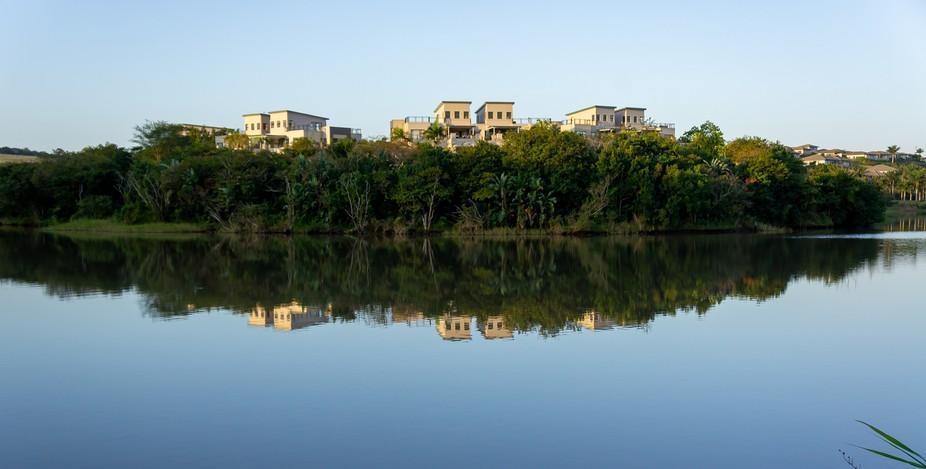 Palm Lakes Reflection